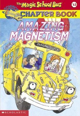 Amazing Magnetism