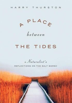 A Place Between the Tides: A Naturalist's Reflections on the Salt Marsh